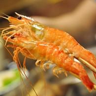 蒸煮水煮虾