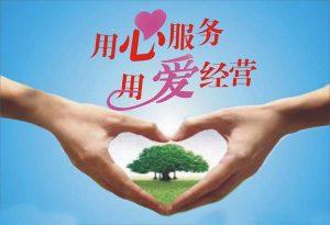 无锡seo网站优化顾问服务