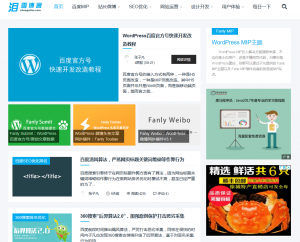 wordpress个人博客付费模板MIP主题