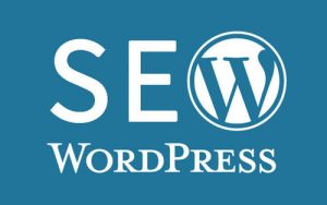 wordpress网站SEO插件Platinum SEO Pack