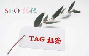 wordpress中tag标签有利于seo优化吗?